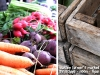 veggie&crates_text